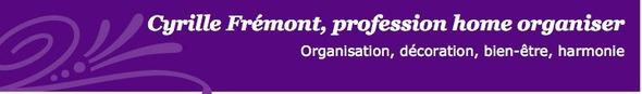 Cyrille Frémont, Home Organiser : Organisez votre intérieur
