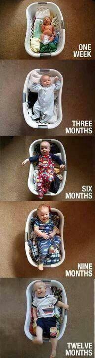 Evolution d'un bel enfant